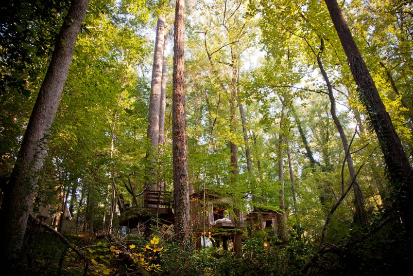 Secluded-Intown-Treehouse-01-850x567